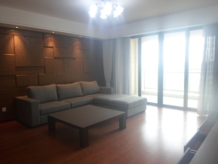 Nice apartment in Jin Qiao Area