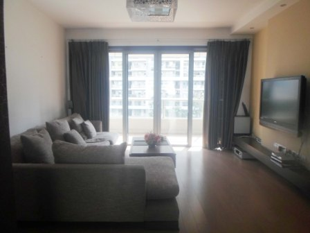 Good apartment in Pudong