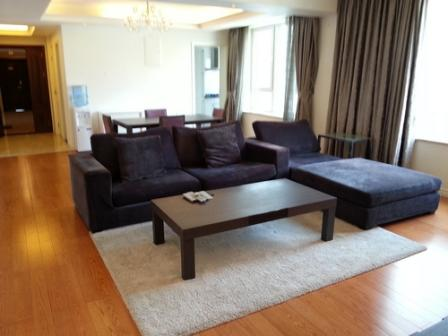 nice apartment in downtown Lujiazui CBD
