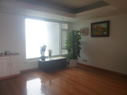 Nice apartment in Pudong